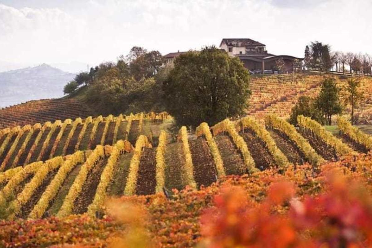 Autumn Supperclub in Piedmont, Italy